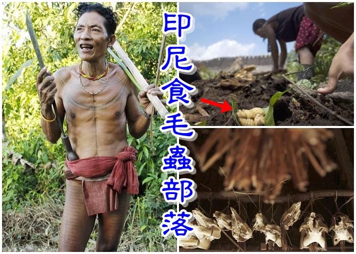 沙尼亚戈姆拍下Mentawai族人生活百态