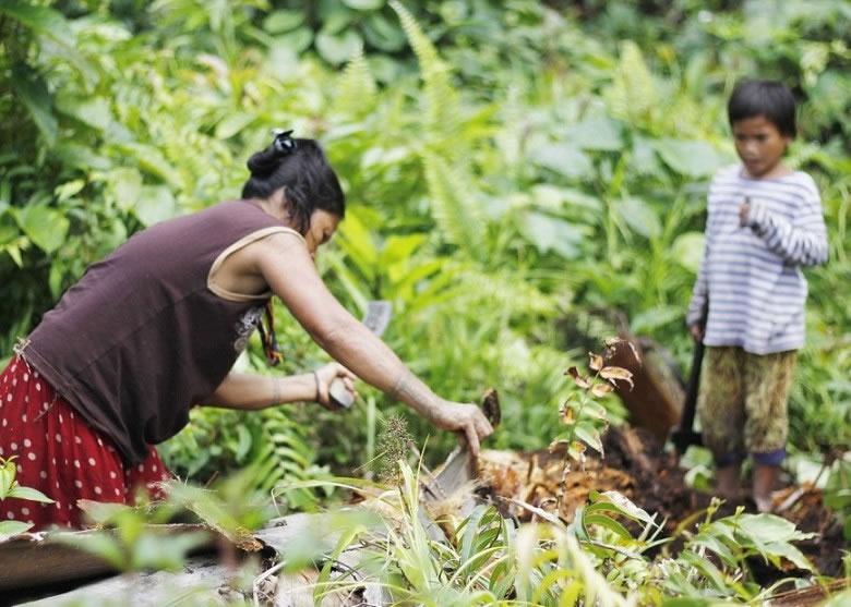 孩子帮助母亲寻找毛虫
