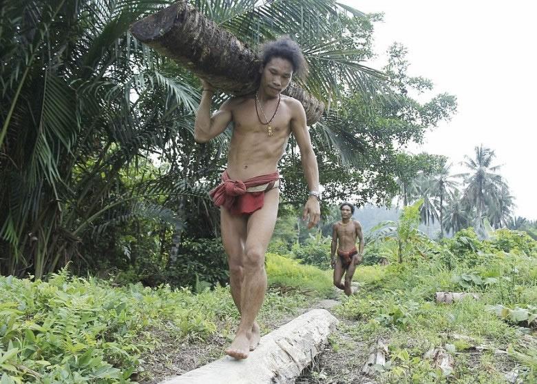 男士搬运木材