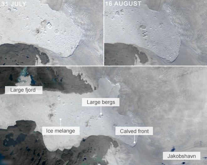 从太空拍摄的照片看到,冰川右方(右上图)的边缘形状跟之前(左上图)不同,出现崩塌。