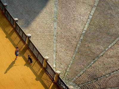 在意大利西埃纳的田野广场遛狗