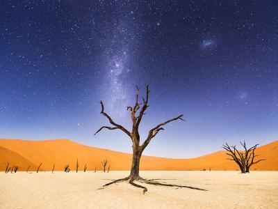 纳米比亚死亡谷之夜