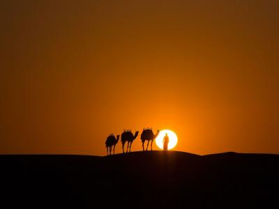 阿联酋的沙漠光影