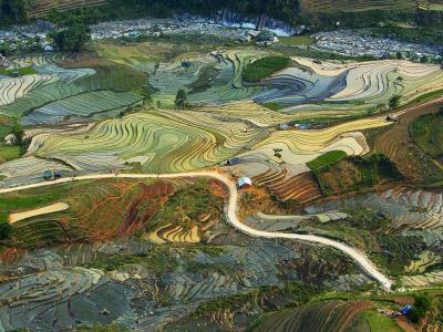 大地的画作:越南北部老街省的梯田