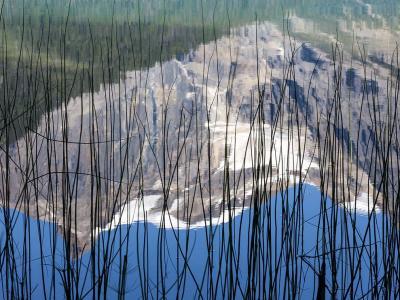 加拿大幽鹤国家公园被芦苇包围的翡翠湖