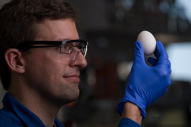 将熟鸡蛋变生的方法,终有一日能减低治疗癌症的开支