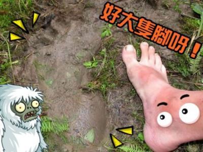 """俄罗斯少年在西伯利亚露营时发现疑似""""雪人""""(Yeti)巨大脚印"""