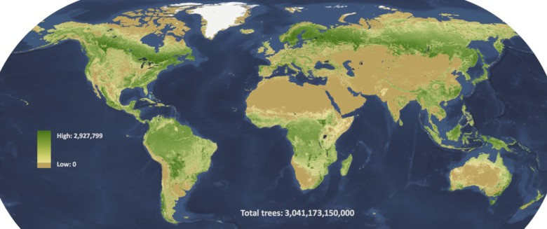 全球树木分布图