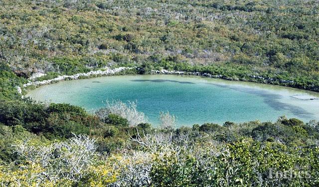 """位于巴哈马圣萨尔瓦多内陆的一个""""蓝洞""""天坑,化石可以在这些坑洞中被完好地保存数千年时间。(图片来源:维基百科/詹姆斯·圣约翰,通过CC-BY 2.0协议授权)"""