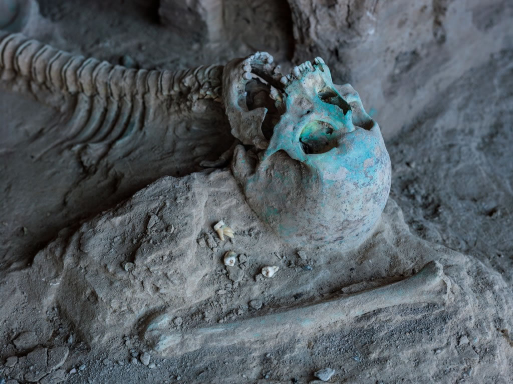 艾娜克遗址中,一具被土里的铜所染色的骨骸躺在一座佛塔旁。这个人究竟是活在寺院运作时期或是后来的年代,则不得而知。 Photograph by Simon Nor