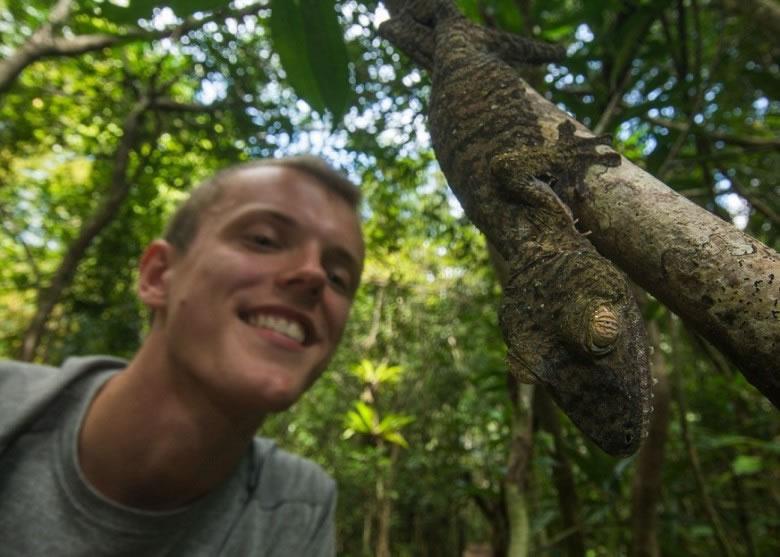 劳利是在曼加贝岛考察时,拍摄到该条变色龙。