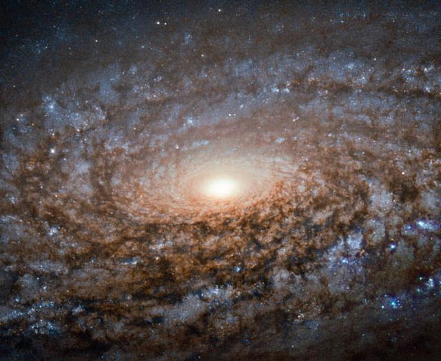 哈勃望远镜拍摄到的绒毛状NGC 3521螺旋星系