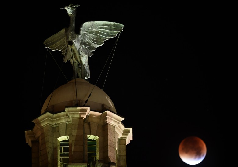 """血月映衬着英国利物浦市的象征""""利物鸟""""雕像"""