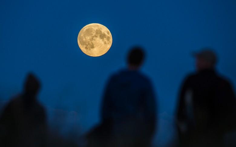 德国民众欣赏美月