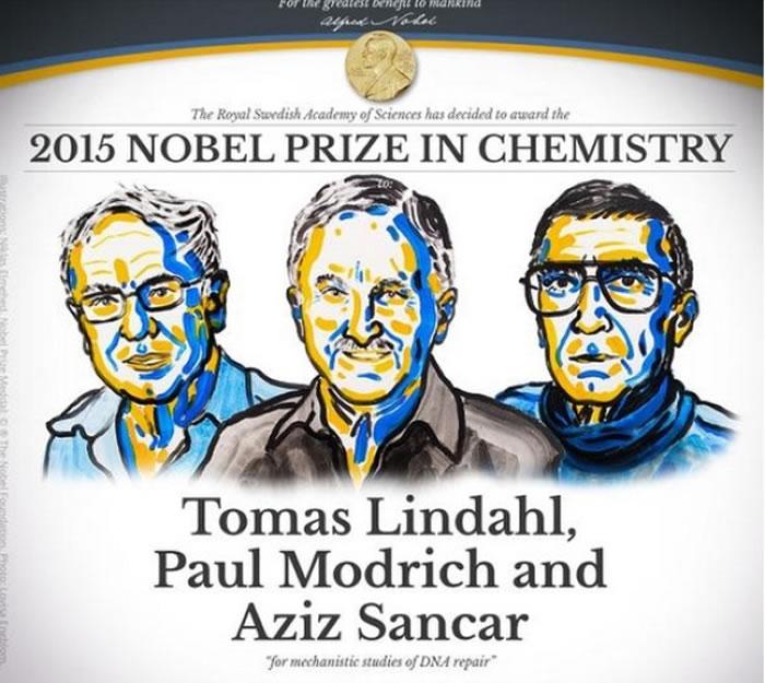 林达尔、莫德里奇、桑贾尔凭研究修补DNA夺奖。