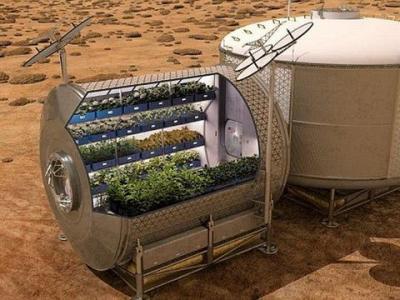 科学家最新研制一种水栽培育系统 有望未来在火星或者月球上进行种植