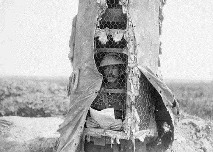 有盟军缩身假树内,以避狙击手射杀。