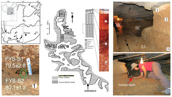 湖南道县福岩洞出土数十枚古人类牙齿化石