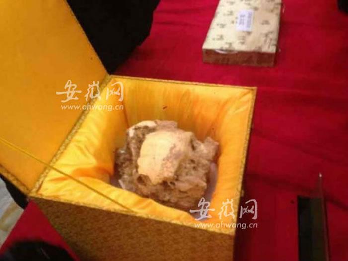 安徽省东至县华龙洞遗址出土直立人头骨化石