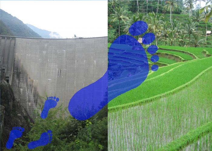 局部人类活动比过去认为的对总日本漫画改编电影大全体水生态足