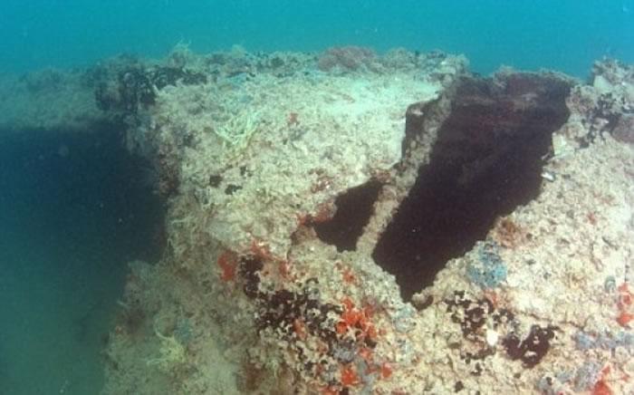 飞机引擎上的珊瑚