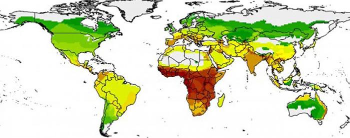 下一个从蝙蝠传播到人类的致命疾病最有可能在非洲撒哈拉以南地区出现