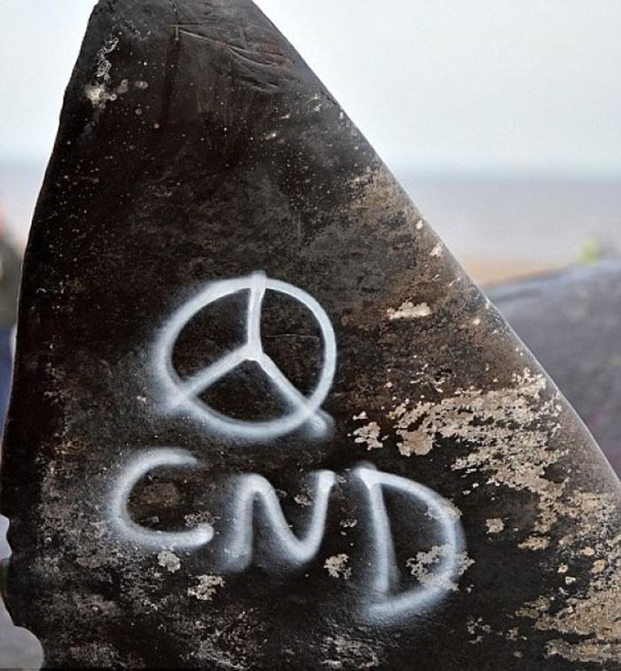 反核人士在鲸身涂鸦。