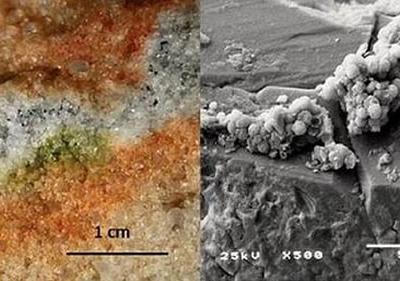 南极洲神秘真菌能够在国际空间站存活18个月 暗示火星表面可能隐藏着生命形式