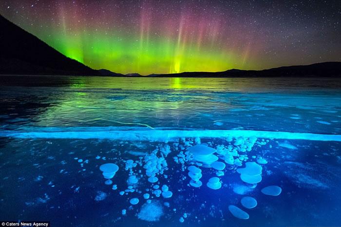 加拿大落基山脉亚伯拉罕湖北极光照射在冰气泡上很壮观