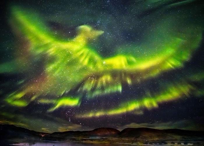 北极光化身火凤凰,非常美丽。