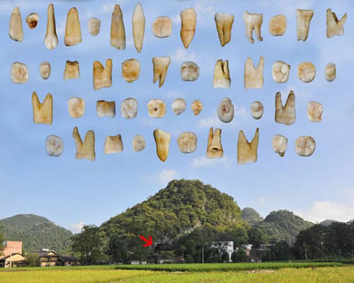 道县福岩洞外景及发现的47枚人类牙齿化石(刘武供图)