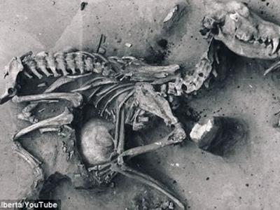 俄罗斯西伯利亚贝加尔湖古墓发现8000年前人狗合葬