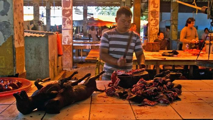 档主在市集摆卖奇怪的野生动物。