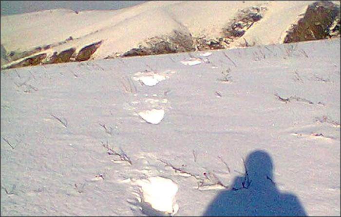 神秘雪人留下的大脚印