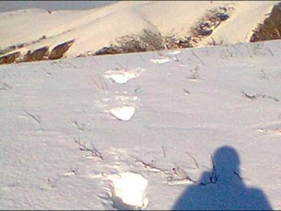"""俄罗斯总统普京到西伯利亚偏远山区度假近距离目击""""雪人""""3人家庭"""