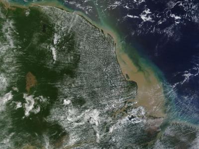 巴西亚马逊河口惊现珊瑚礁延绵千里