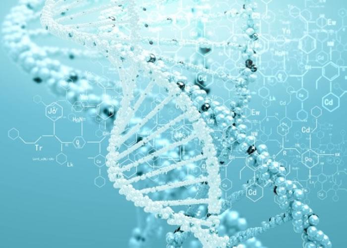 英国研究发现半数西欧男人基因承自4000年前青铜时代同一统治者