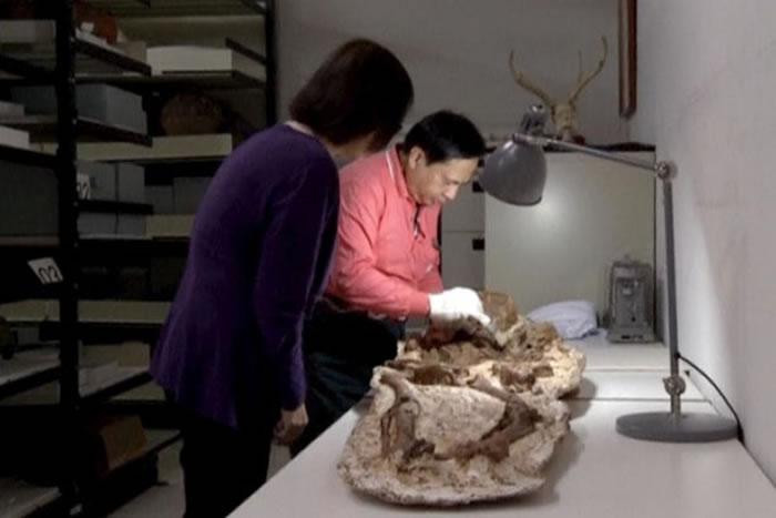 台湾考古学家在台中挖掘出4800年前的母子相拥人类遗骸