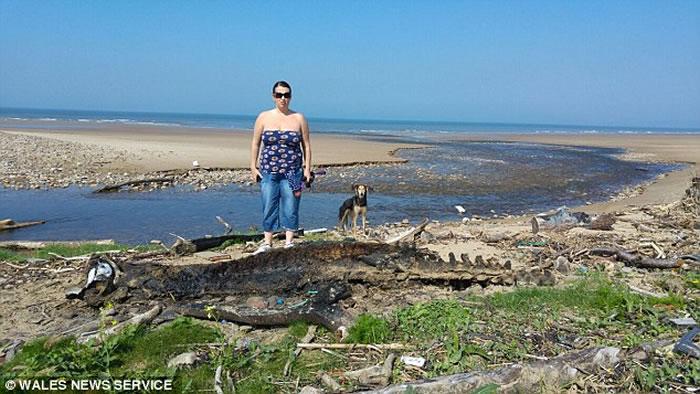 海怪终于死了?英国海滩惊现巨型神秘海洋生物尸体