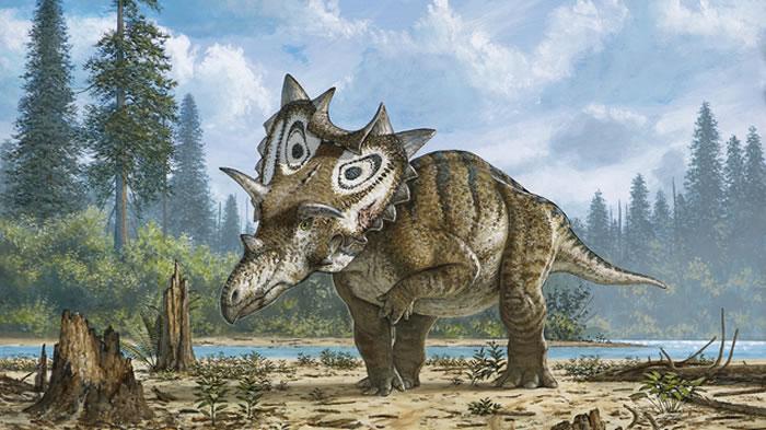 美国退休核子物理学家变身化石猎人 发现白垩纪新品种恐龙化石