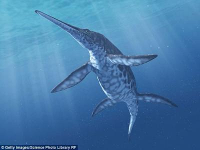 新物种鱼龙化石研究表明2.5亿年前地球物种大灭绝后出现生物爆发式进化发展