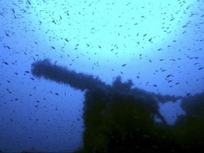 二战期间神秘失踪的英国潜艇HMS P311在意大利萨丁尼亚岛现踪