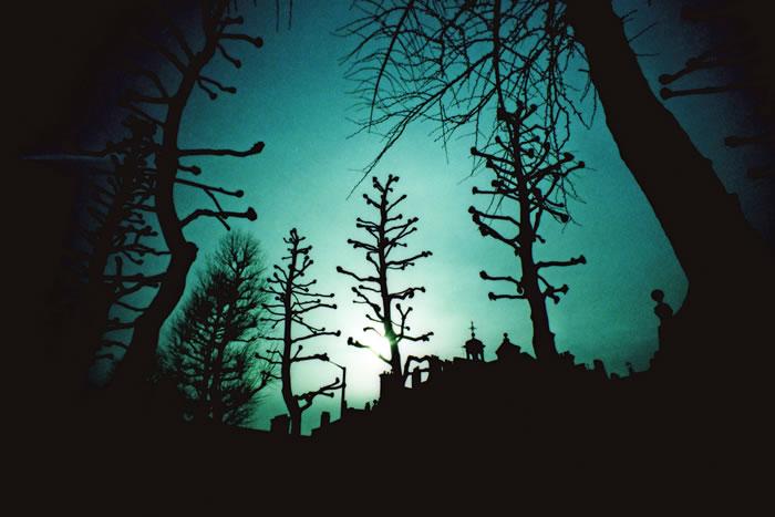 美国俄勒冈州Forest Grove小镇出现神秘怪声 持续数周后突然消失