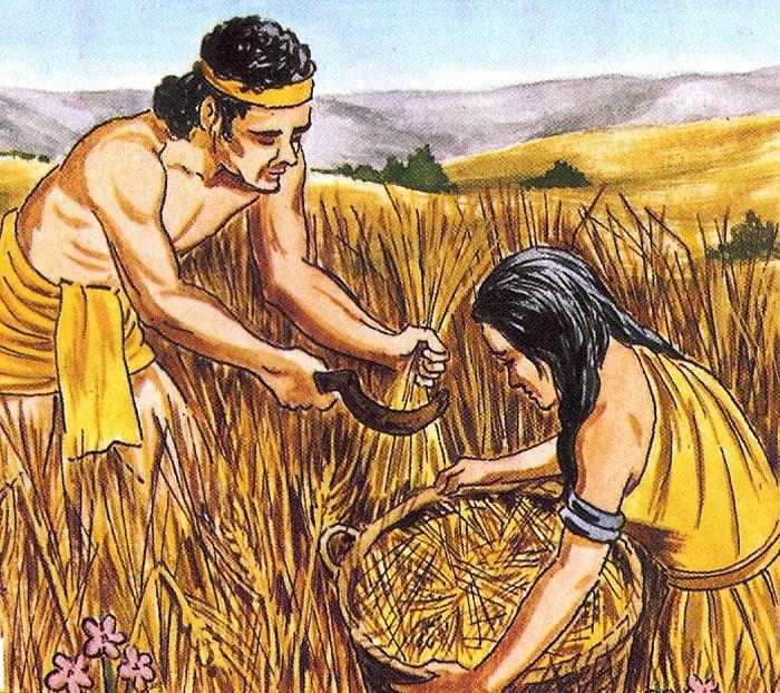 新石器时代农业驱动男性人口扩张