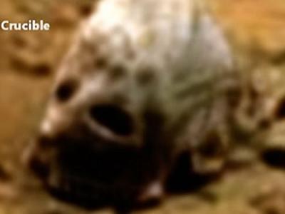 """""""外星人猎人""""声称在好奇号火星图像中发现""""大脚野人头骨"""""""