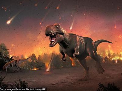研究发现恐龙灭绝后哺乳动物的进化呈现爆发式发展