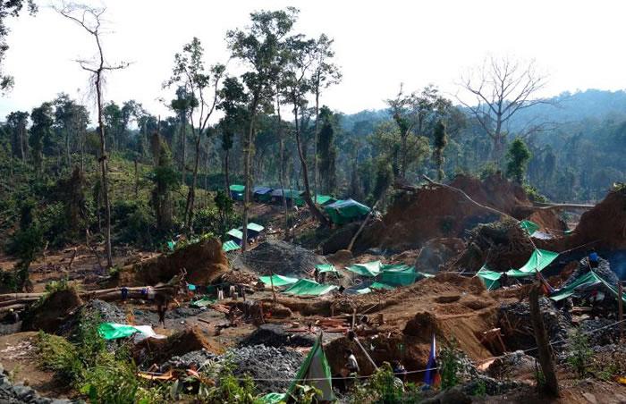 缅甸胡康河谷矿藏是白垩纪琥珀非常珍贵的来源。琥珀不仅因其瑰丽,更因为本身蕴含的科学讯息而价值连城。 PHOTOGRAPH BY MO LI