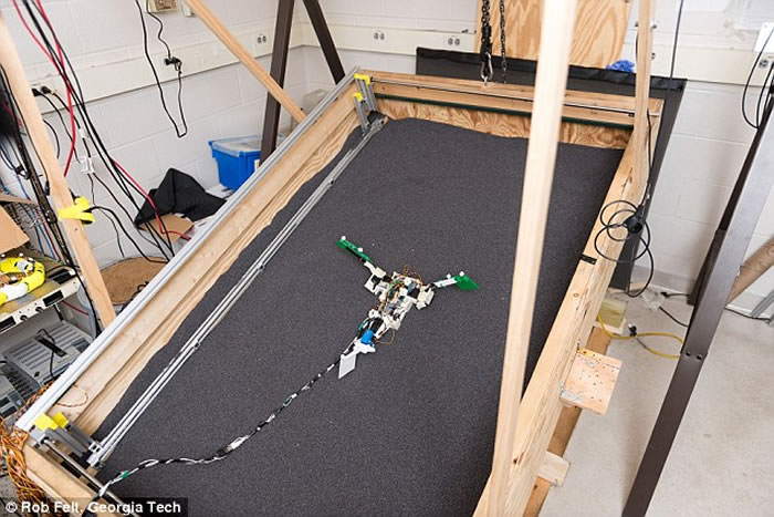 团队还制造了一个能模拟弹涂鱼和早期四足动物不同动作的机械装置