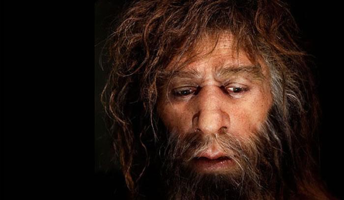 欧洲尼安德特人曾是食人族