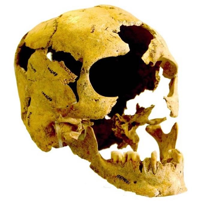 伊朗出土的10000年前新石器时代古人类头骨(photo/©: Courtesy Fereidoun Biglari, National Museum